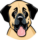 Anatolian Sheperd Dog cartoon Royalty Free Stock Image