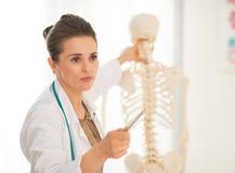 Anatomía de enseñanza de la mujer del médico Fotos de archivo libres de regalías