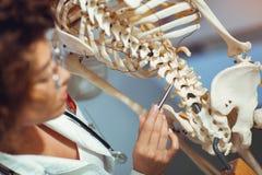 Anatomía de enseñanza de la mujer del médico usando el esqueleto humano Fotografía de archivo