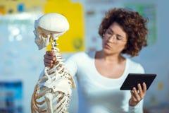 Anatomía de enseñanza de la mujer del médico usando el esqueleto humano Imagenes de archivo