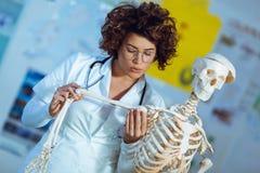 Anatomía de enseñanza de la mujer usando modelo esquelético humano Foto de archivo