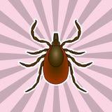 Anatomía del insecto Parásito de la señal de la etiqueta engomada Bosquejo de la señal ácaro Tick Design para el libro de colorea Imagen de archivo