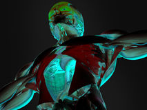 Anatomi av den mänskliga bröstkorgen Royaltyfri Fotografi