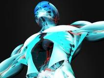 Anatomi av den mänskliga torson Fotografering för Bildbyråer