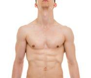 Anatomi för manlig bröstkorg - mannen tränga sig in Front View Arkivfoto