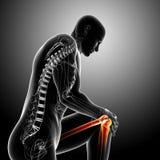 Anatomia da dor do joelho no cinza Foto de Stock Royalty Free