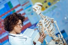 Anatomia de ensino da mulher usando o modelo de esqueleto humano imagens de stock