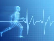 Anatomia Running do homem Imagens de Stock