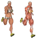 Anatomical bodybuilder running Royalty Free Stock Photo