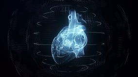 Anatomically correct blue digital human heart seamless loop with cardiac scan