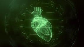 Anatomically correct green digital human heart. Futuristic particle cardiac scan