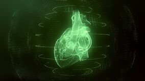 Anatomically correct green digital human heart seamless loop with cardiac scan