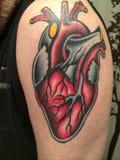 Anatomiczny kierowy tatuaż Zdjęcie Stock