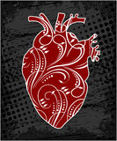 Anatomiczny kwiecisty ludzki serce Zdjęcie Royalty Free
