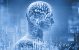 Anatomie, hersenen, röntgenstraal Stock Foto