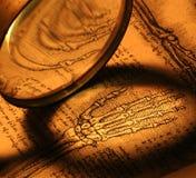 anatomy fotografia de stock