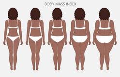 Anatomy_Body massindex för människokropp av afrikanska kvinnor från brist av Royaltyfri Bild