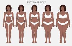 Anatomy_Body massindex för människokropp av afrikanska kvinnor från brist av Royaltyfri Foto