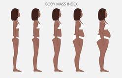 Anatomy_Body massindex för människokropp av afrikanska kvinnor från brist av Arkivbild