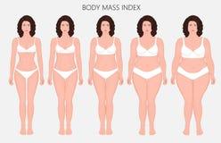Anatomy_Body massindex för människokropp av europeiska kvinnor från bristnolla Fotografering för Bildbyråer