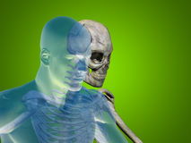 Anatomy concept human man medical health body chest Stock Photo