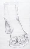 Anatomy.Drawing studio works Royalty Free Stock Photos