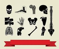 Anatomy icons set 2 Royalty Free Stock Photography