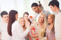Anatomy Lesson. Anatomy teacher and her students during a lesson royalty free stock photos