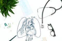 anatomy Local de trabalho do doutor com artigos médicos fotografia de stock royalty free