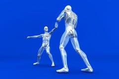 Anatomy -  Martial Arts Royalty Free Stock Photography