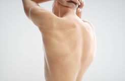 Anatomy of muscle body - 3D Rendering. Anatomy of muscle body - human - 3D Rendering Stock Photography