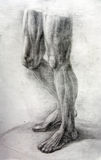 Anatomy Muscles.Drawing studio works. Anatomy the muscle of the man is drawn by a pencil on a white paper.Drawing studio works Stock Images