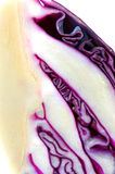 Anatomy of a purple cabbage Stock Images