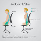 Anatomy of sitting. Anatomy of sitting The lumbar region is sometimes referred to as the lower spine, or as an area of the back in its proximity. Health care royalty free illustration
