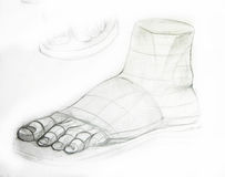 Anatomy Skeleton. Drawing studio works Stock Photos