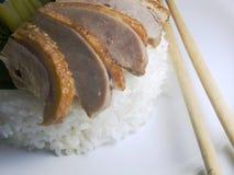 Anatra affettata arrostita con riso Fotografia Stock