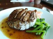 Anatra arrostita con salsa, stile cinese, sopra riso su un piatto Immagini Stock Libere da Diritti