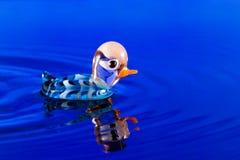 Anatra blu Immagini Stock Libere da Diritti