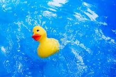 Anatra del giocattolo dei bambini con le gocce di acqua Fotografia Stock Libera da Diritti