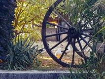 Anatra della ruota dell'azienda agricola fotografie stock