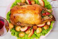 Anatra di arrosto con la patata, le mele, l'insalata, il timo ed i rosmarini Vista da sopra, colpo superiore dello studio Immagine Stock Libera da Diritti