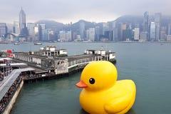 Anatra di gomma in Hong Kong Immagini Stock