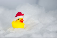 Anatra di gomma su ghiaccio che indossa Red Hat Fotografia Stock Libera da Diritti