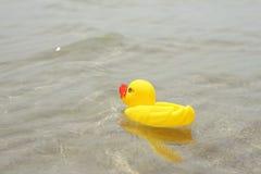 Anatra di gomma sul mare Fotografia Stock Libera da Diritti