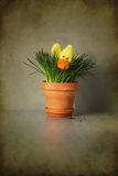 Anatra di Pasqua Fotografia Stock Libera da Diritti