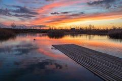 Anatra di tramonto del paesaggio immagine stock libera da diritti