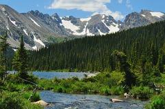 Anatra nel lago mountain il giorno dell'estate Fotografia Stock