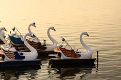 Anatra sul lago Fotografie Stock