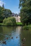 Anatre che nuotano nello stagno con il castello di Théméricourt dentro Fotografia Stock Libera da Diritti