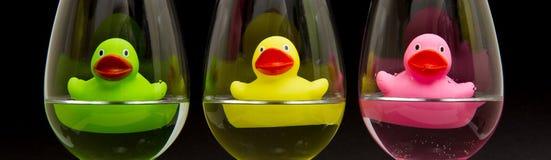 Anatre di gomma verdi, gialle e dentellare in bicchieri di vino Immagine Stock Libera da Diritti